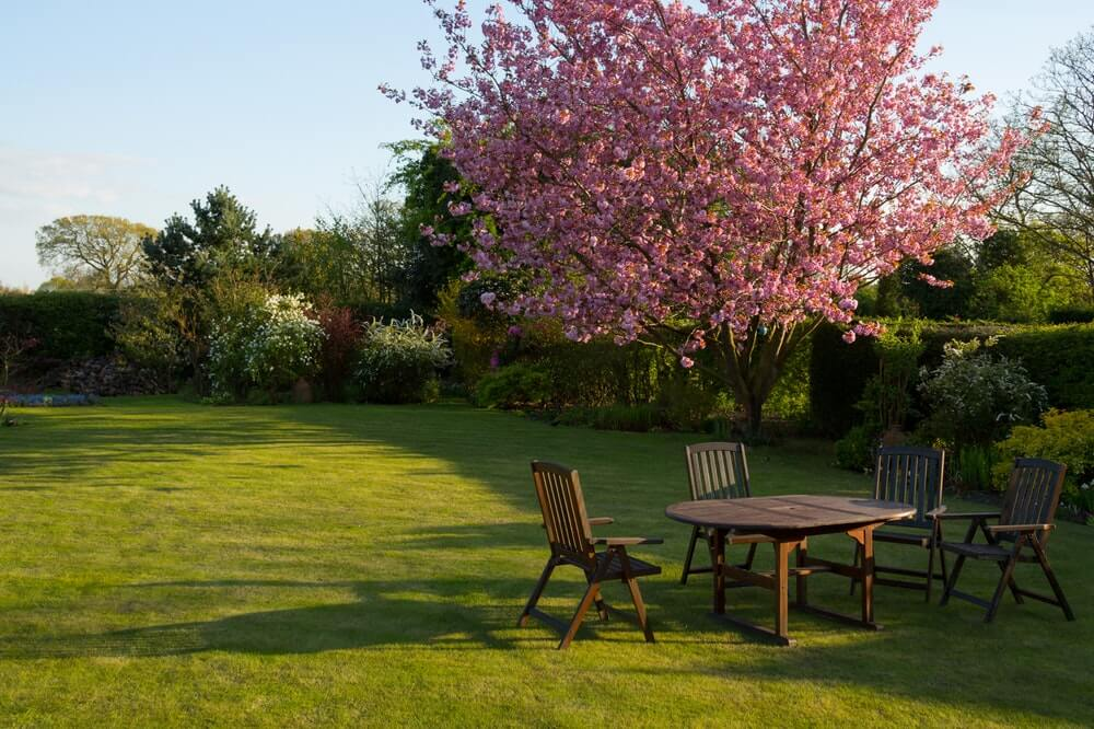 How to Make Your Landscaping Look its Best